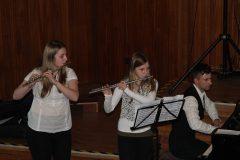 Kammermusikkonzert-2014-3-scaled